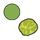 Evolution in Garden Peas